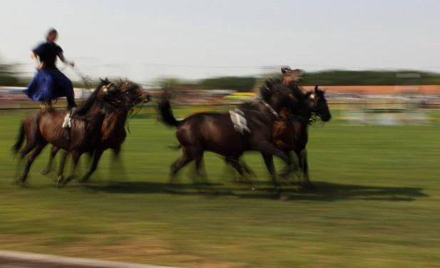 Hortobágyi lovas napok